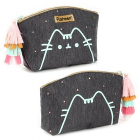 Pusheen vanity case