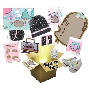 Pusheen Mystery Surprise Box no 2